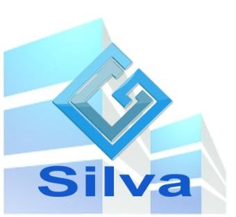 Grupo Silva Engenharia